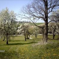 3bethenhof-reitstall22